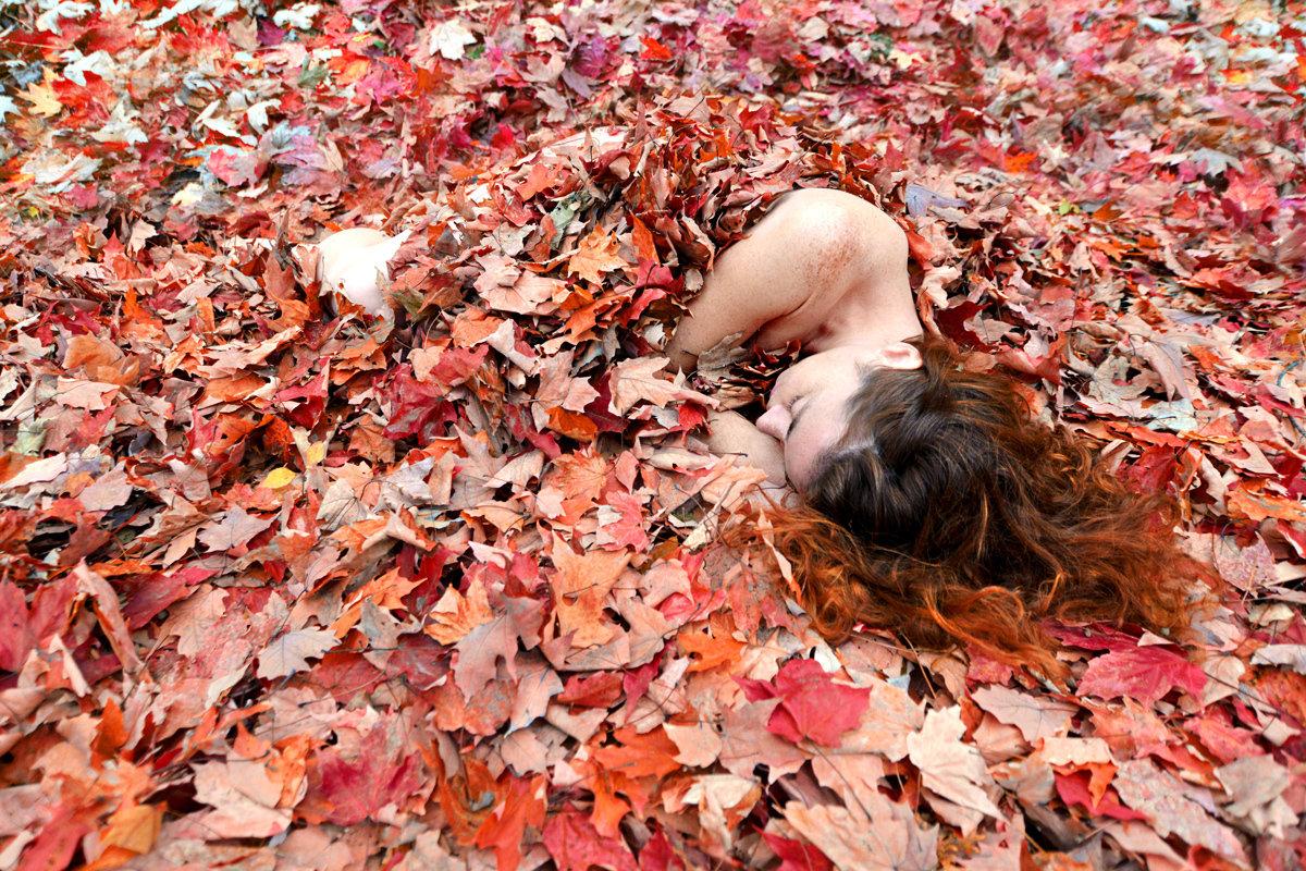 Lit d'automne 11x14