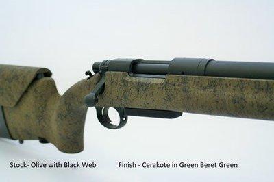 Pilot Mountain Arms Tactical Rifle