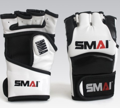 Sparring gloves (SMAI)