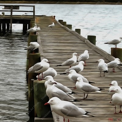 The Old Jetty 2