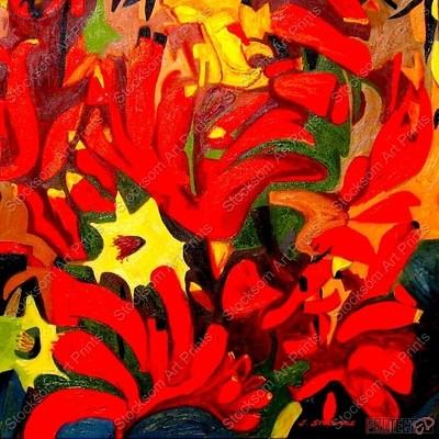 Red Flowering Kangaroo Paw