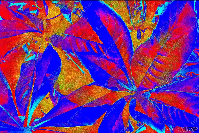 I Love Leaves 6