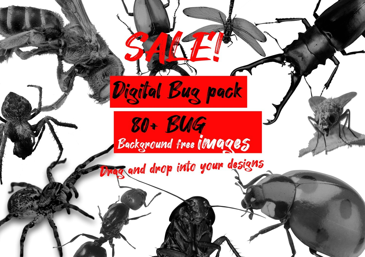 Digital Bug pack 80+ images