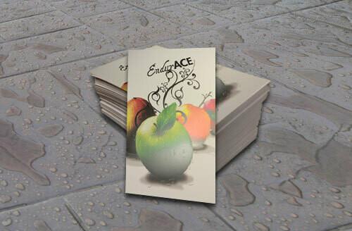 10pt Endurace Plastic Cards