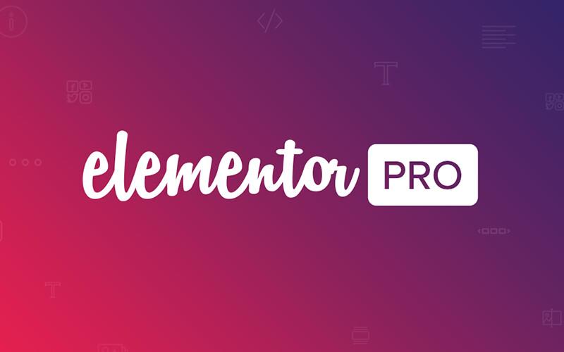 Elementor Site Builder + Premium Plugins