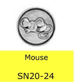 SN2024