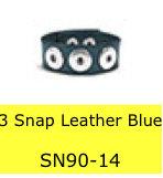 SN9013