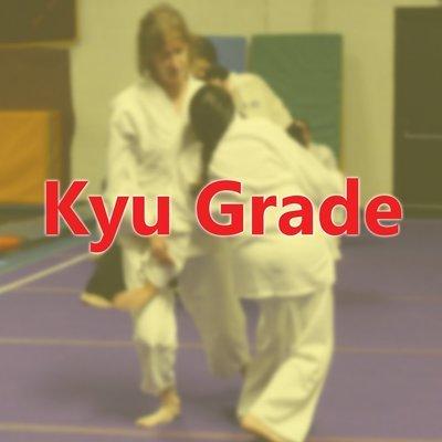 Kyu Grade Student Annual Membership