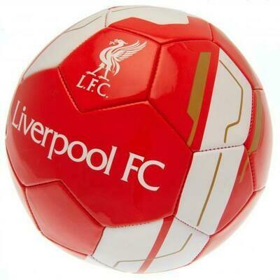 Liverpool FC Football VR