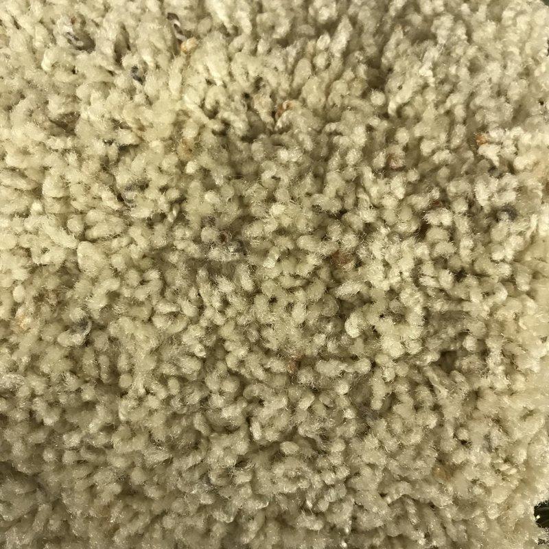 Carpet *Short Roll Discount* - Garden Riches - Wheat Field - Size 12' x 37'