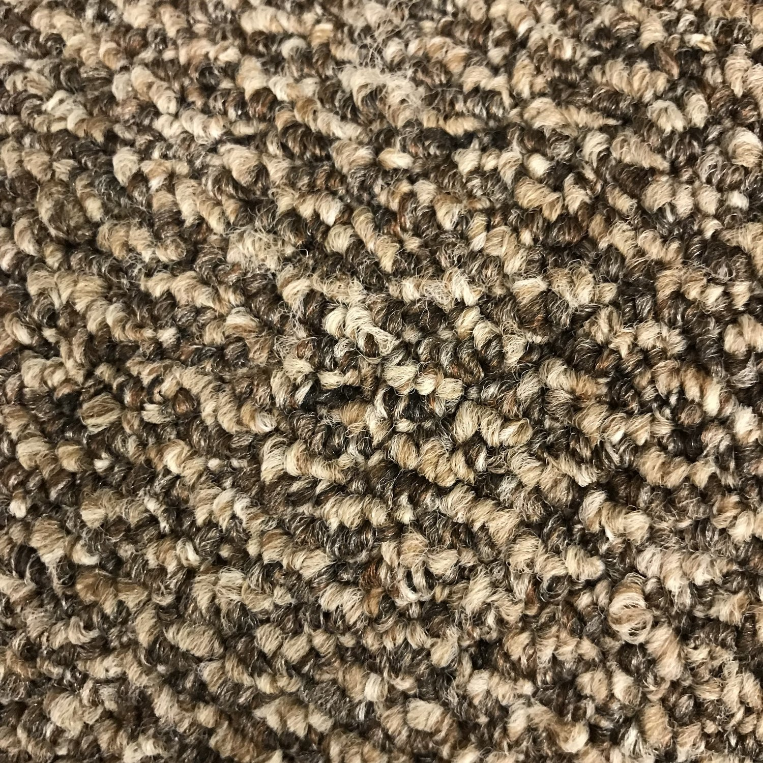 Kanga-Back Carpet - Style: Imagine - Color: Perfect Mix - Price per Square Foot
