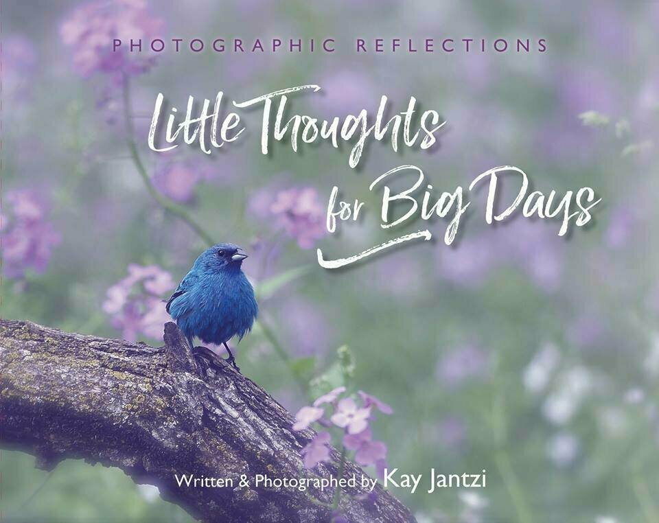 Little Thoughts For Big Days - Gift Book