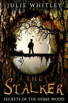 The Stalker - Young Adult Fiction