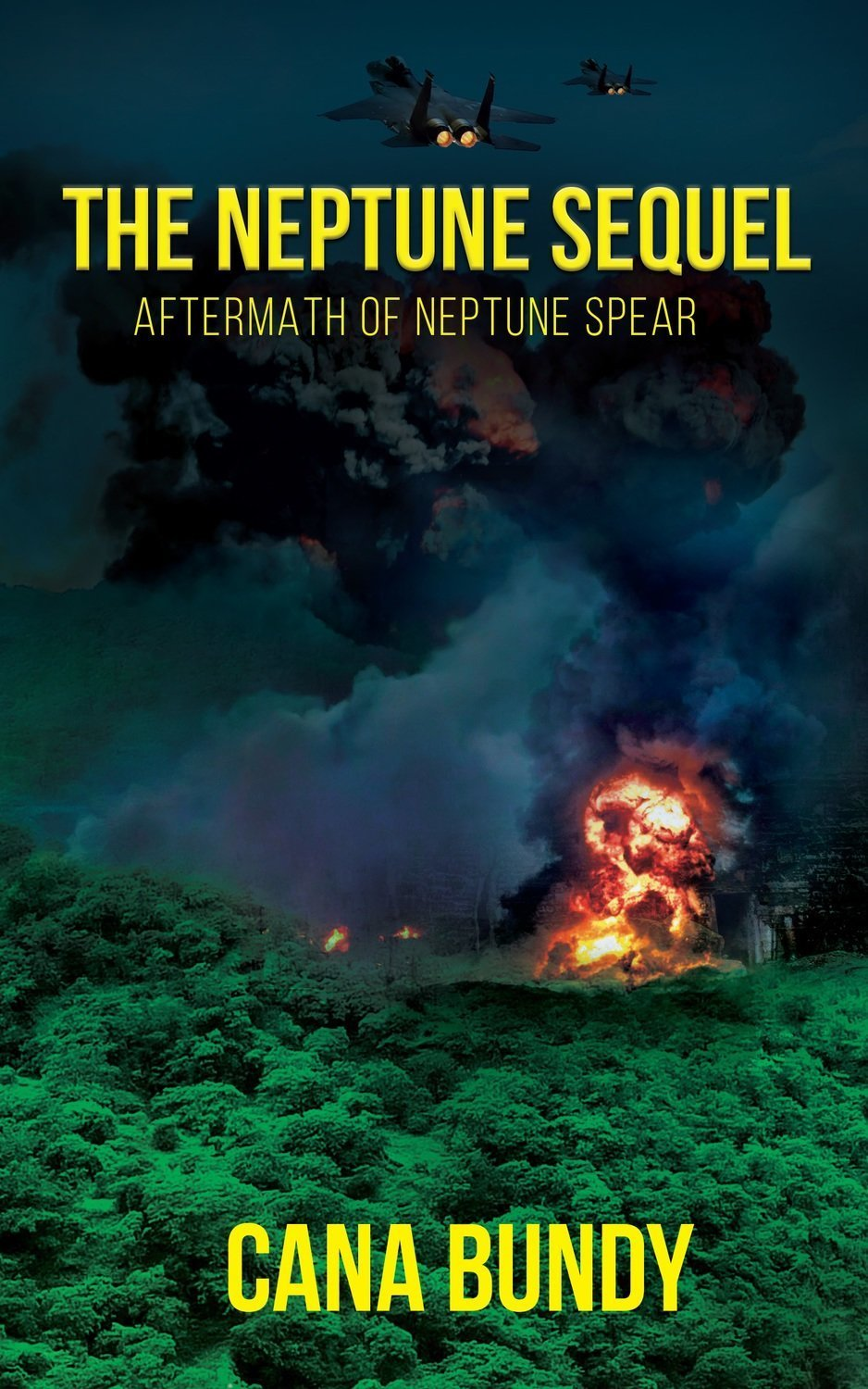 The Neptune Sequel: Aftermath of Neptune Spear - Thriller