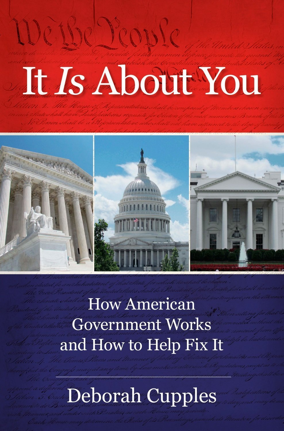 It Is About You: How American Government Works and How to Help Fix It - Non-Fiction
