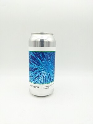 Brasserie Popihn (FR) - NEIPA DDH Amarillo / Mosaic (New England IPA) - 6.7% - Cannette 44cl