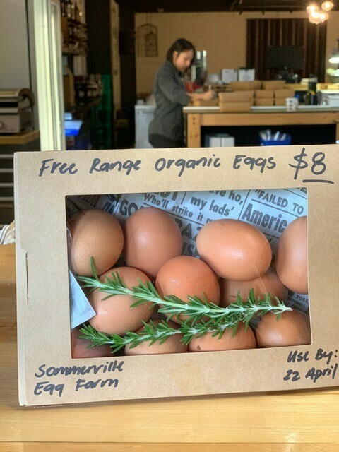 Somerville Eggs x 12