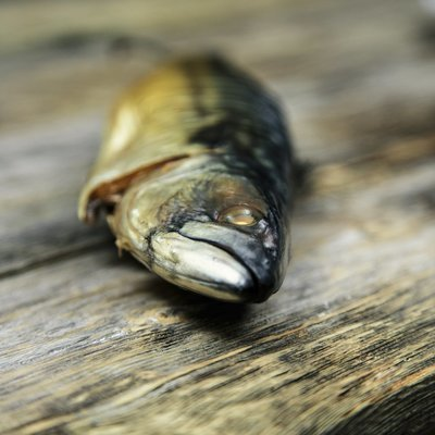 Kaldrøket - speket makrell - splittet / filet