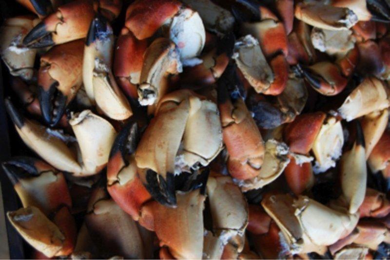 Kokte krabbeklør 1 kg