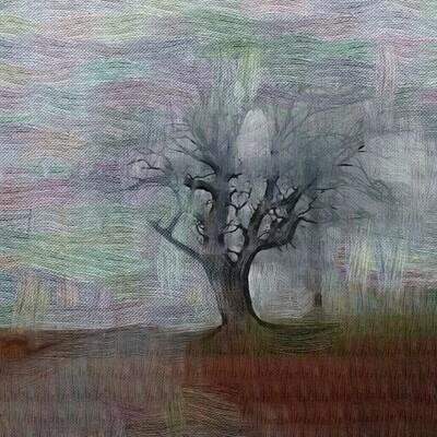 Sallerup tree