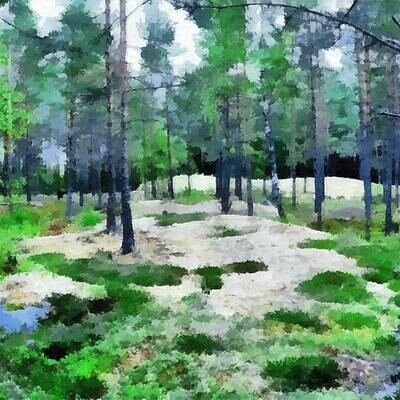 Lingonskogen