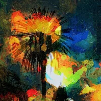 Palm explosion