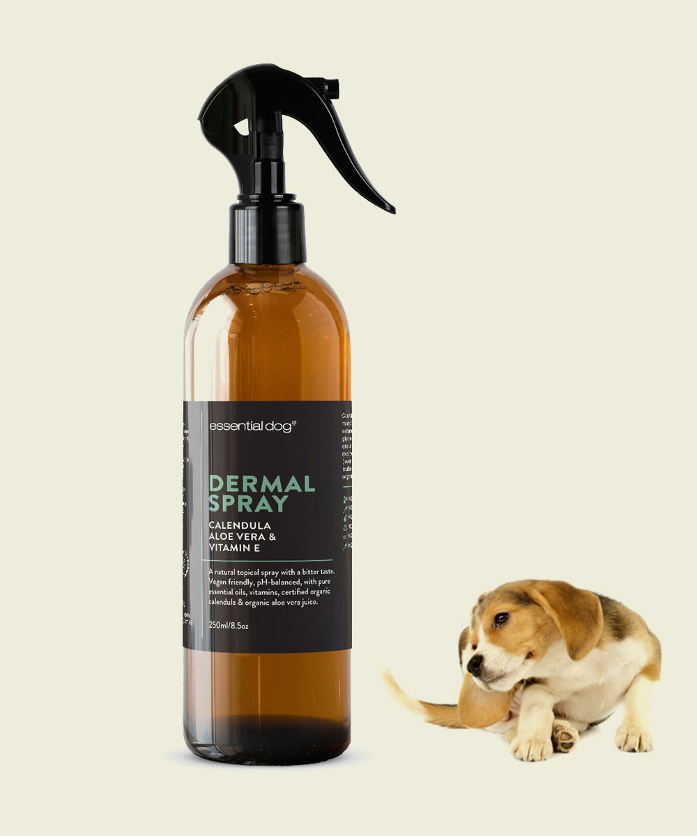 Derm Scratch Spray for Dogs: Aloe Vera, Calendula & Vitamin E