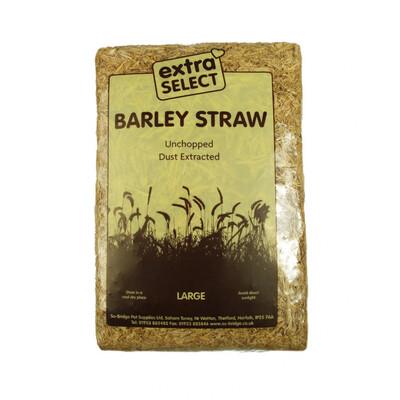 Extra Select Barley Straw