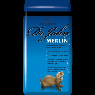 Dr John merlin