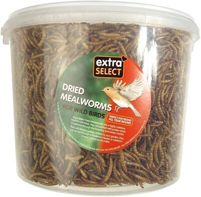 EXTRA SELECT MEALWORM 5LITRE