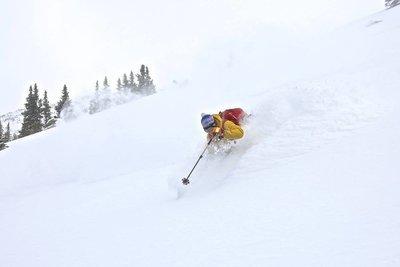 Ski og skredworkshop, Colorado 28.02-01.03.2020 (registration fee)