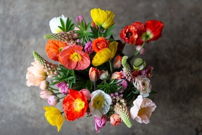 SPRING DELIGHTS SUBSCRIPTION