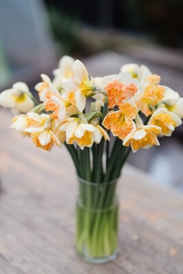 Sunny Girlfriend Narcissus Bunch