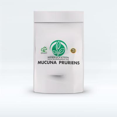 MUCUNA EXTRACT 15% L-DOPA