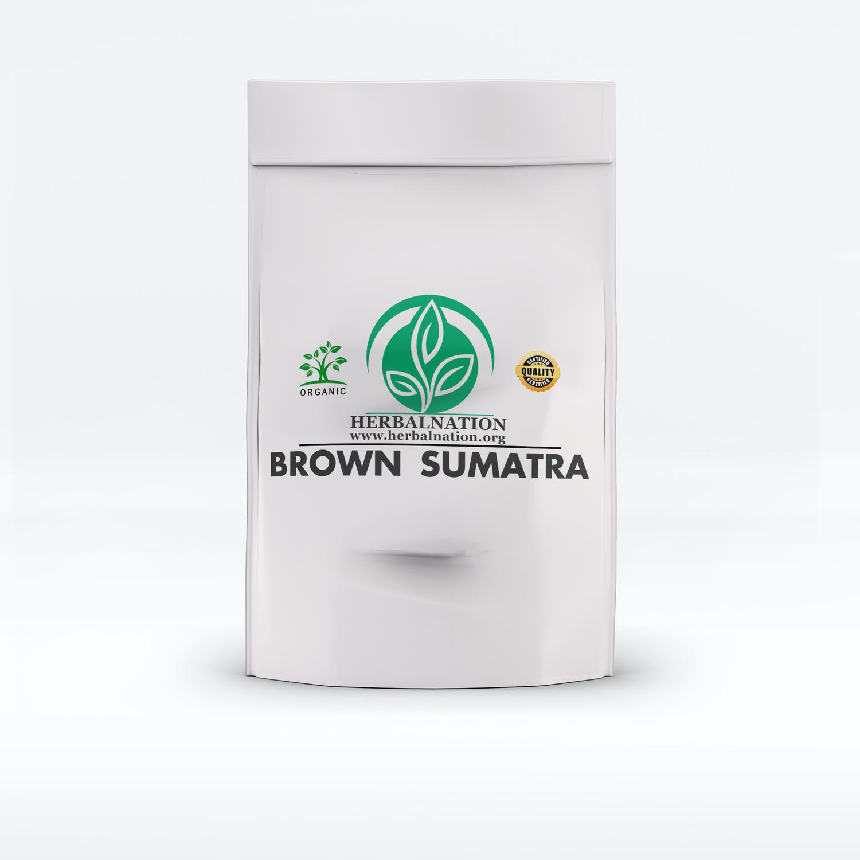 BROWN SUMATRA Mitragyna speciosa