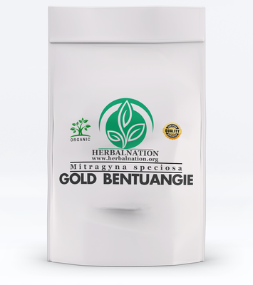GOLD BENTUANGIE  Mitragyna speciosa