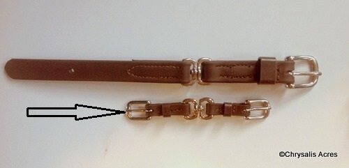 Rein Swivel - Double Buckle