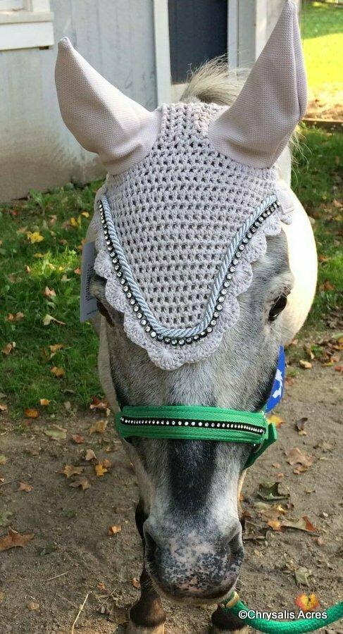 Crochet Ear Net w/Bling - Pony
