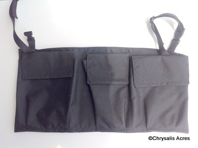 Carriage Storage Bag