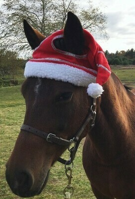 Christmas Horse Hat