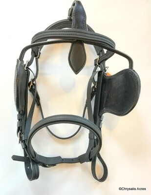 Regular Bridle