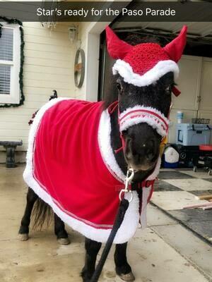 Christmas Set for Mini And Small Pony