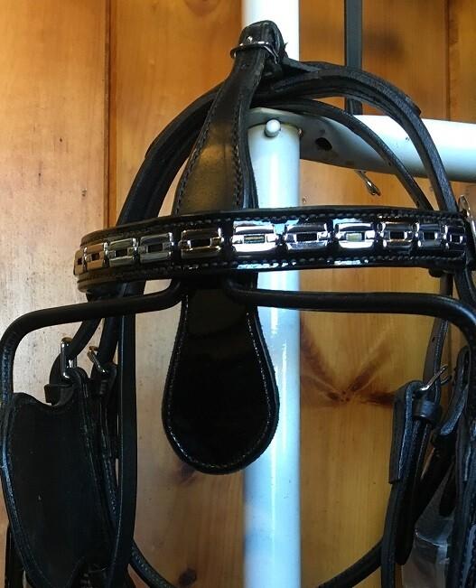 Leather Browband - Embellished