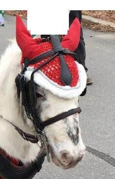 Christmas Ear Bonnet