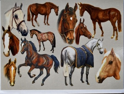 Horse Collage Card