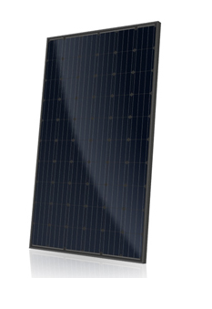 Canadian Solar  CS6K-MS 295-Call for Shipping Quote