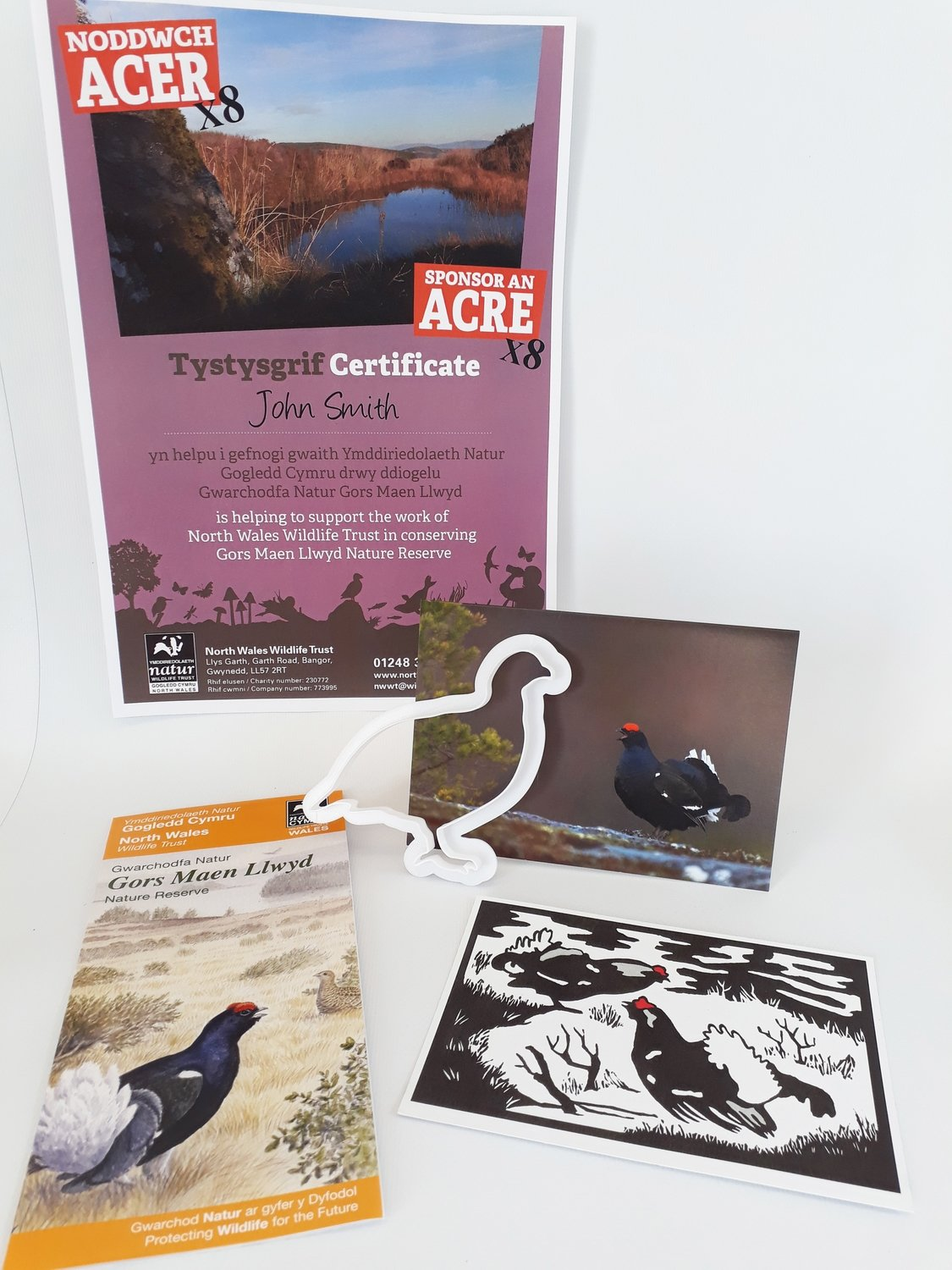 Sponsor an Acre of Gors Maen Llwyd Nature Reserve