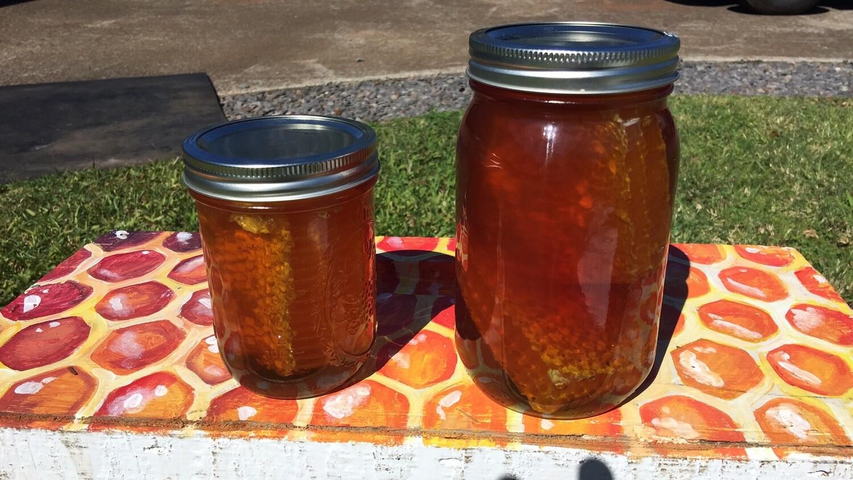 1 qrt COMB honey