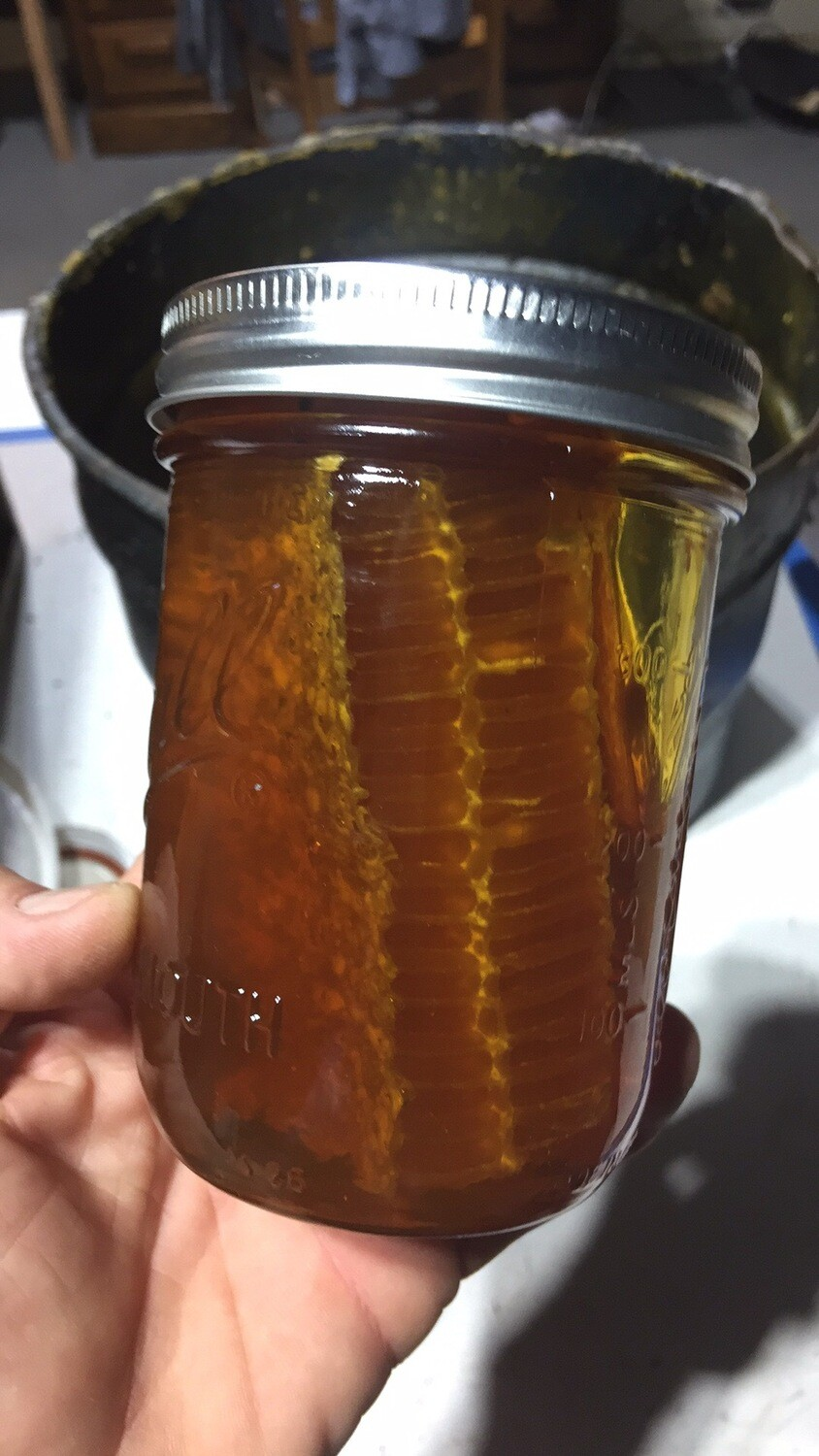 1 Pint Comb honey