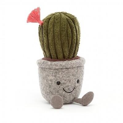 Bloempotje cactus